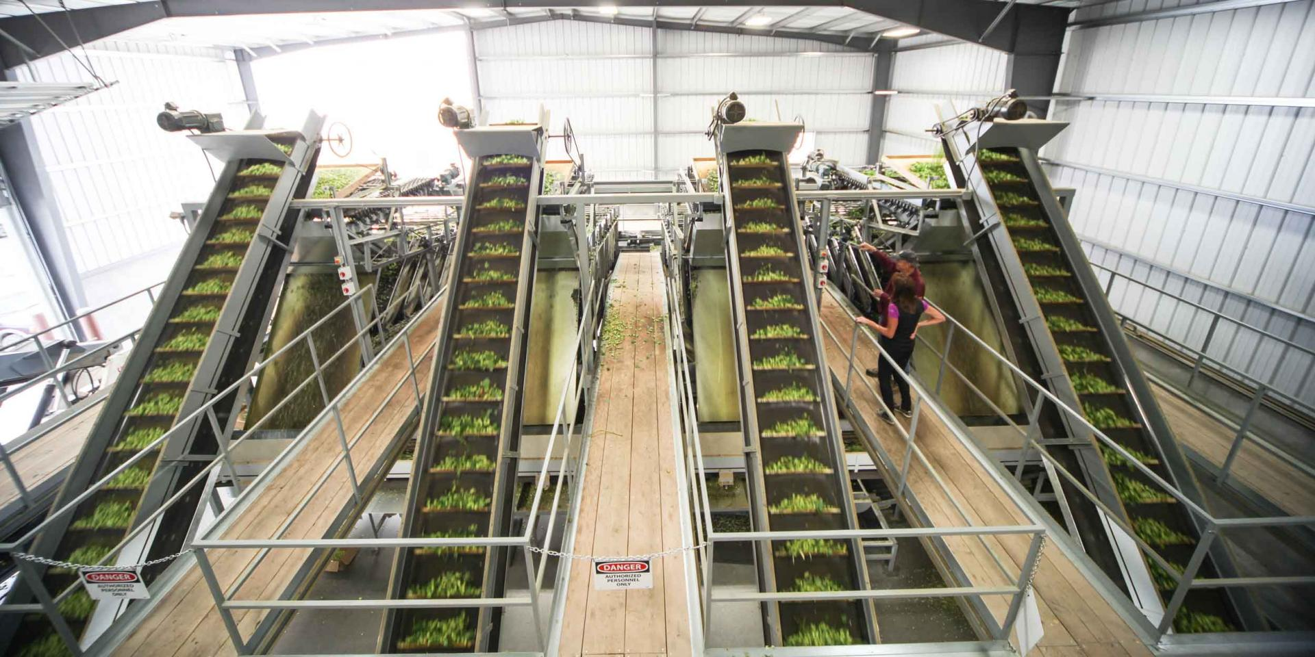 Conveyors with Hops