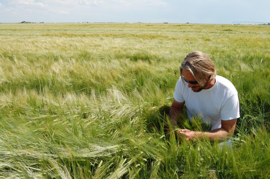 man crouching in field